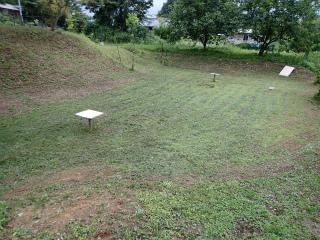野芝の播種後2ヶ月、ドローン練習場。: あぐりんな暮らし